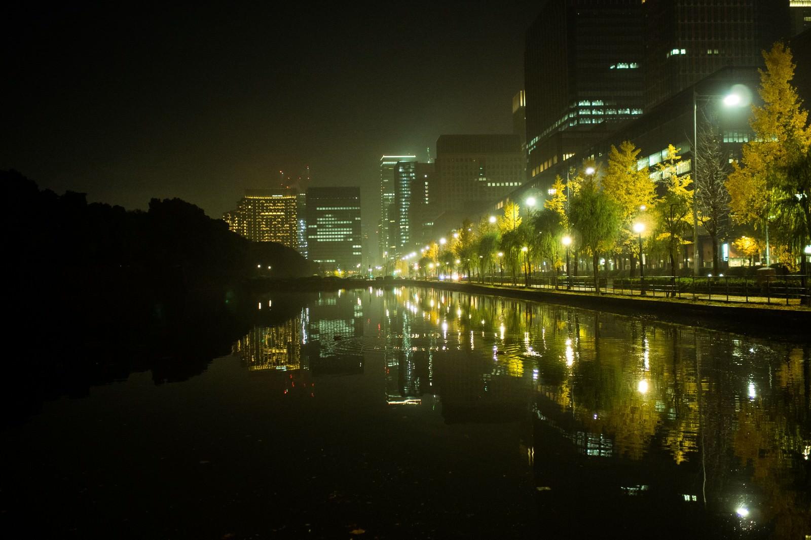 「皇居の外濠に映り込むビル群の夜景」の写真