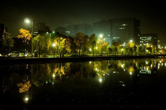 水面に映り込む皇居の堀とビル群の夜景の写真