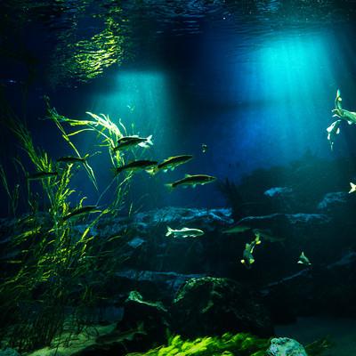 川の中を泳ぐ魚と射し込む光の写真
