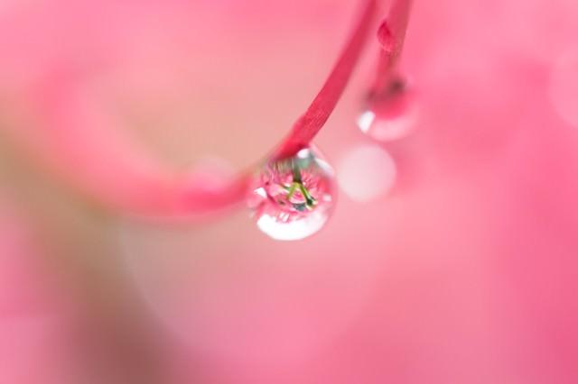 水滴の写真