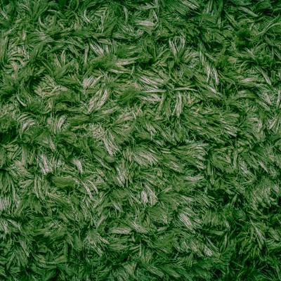 芝生色の絨毯の写真