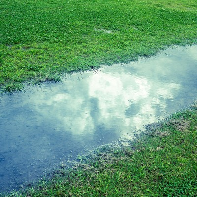 雨上がり映り込む空の写真
