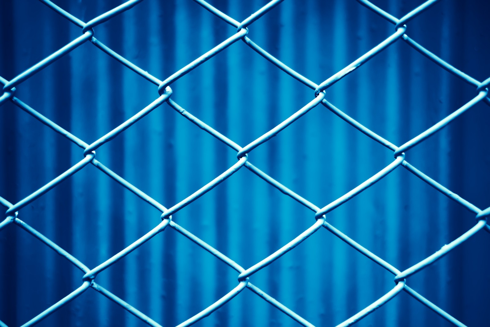 「青いネットフェンス」の写真