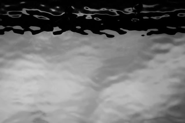 澱む水面の写真