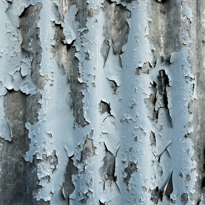 「朽ちて剥がれたトタン」の写真素材