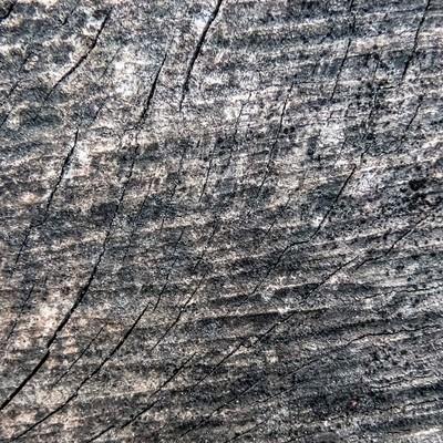 「木材にヒビが入る(テクスチャー)」の写真素材