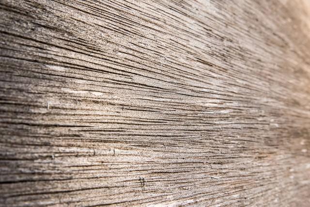 合板(ベニア板)の表面の写真