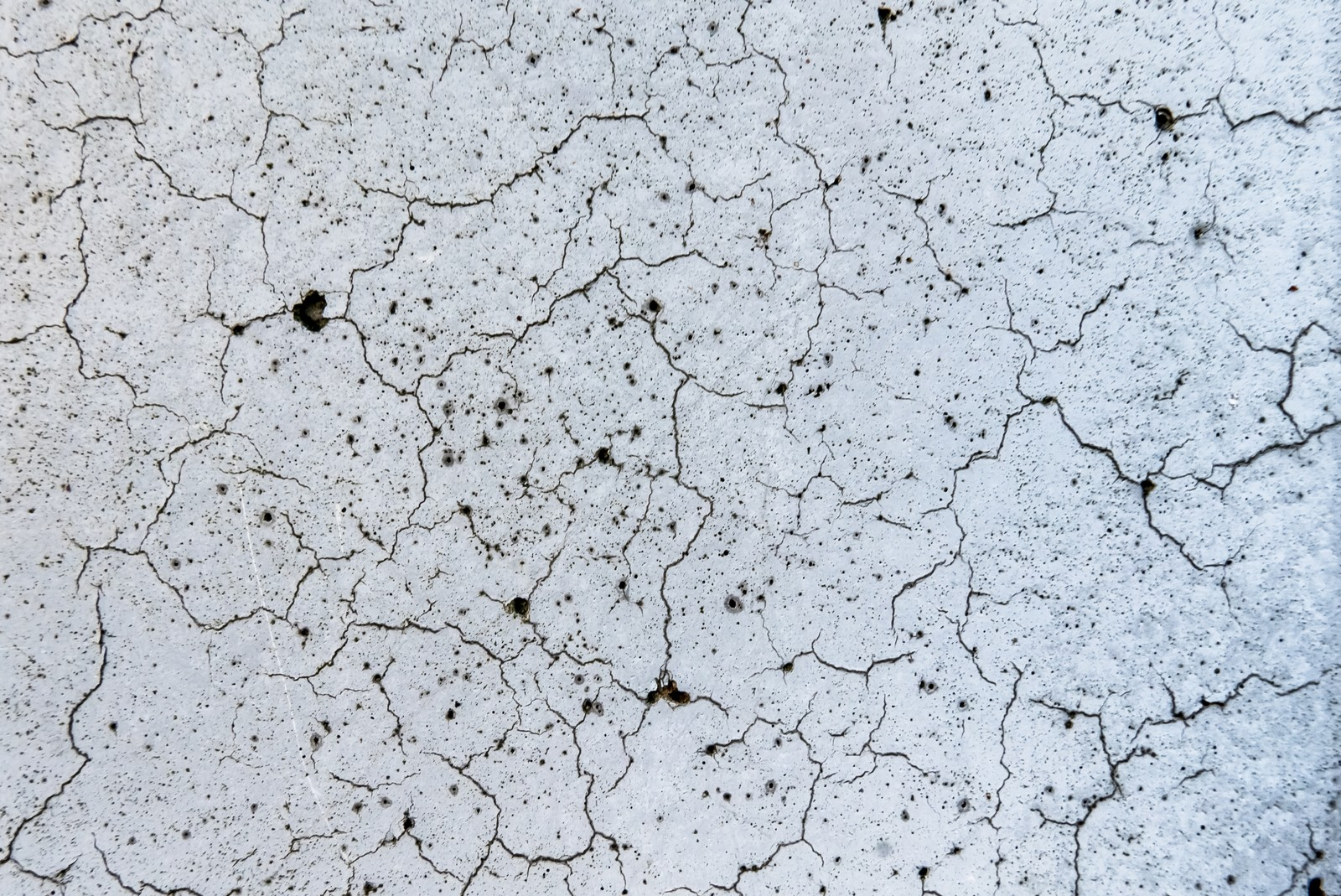 「ひび割れが多い壁(テクスチャー)」の写真