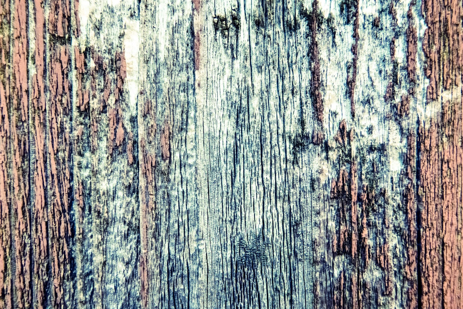 「朽ちた木の壁」の写真