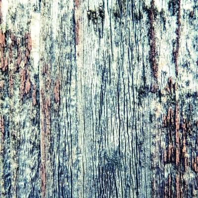 朽ちた木の壁の写真