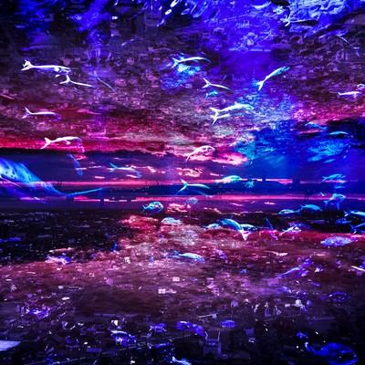 「パノラマアクアリウム(フォトモンタージュ)」の写真素材