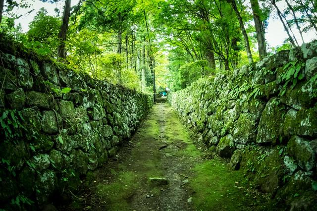 石垣に挟まれた道の写真