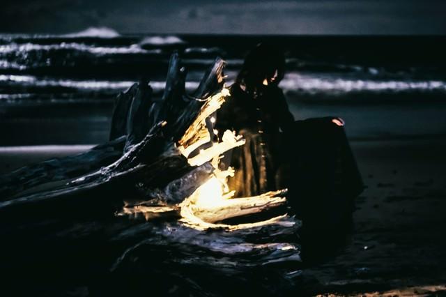 暗闇の海と流木の写真