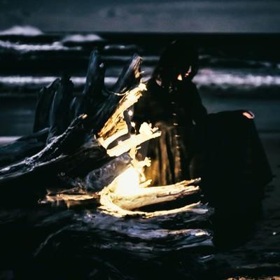 「暗闇の海と流木」の写真素材