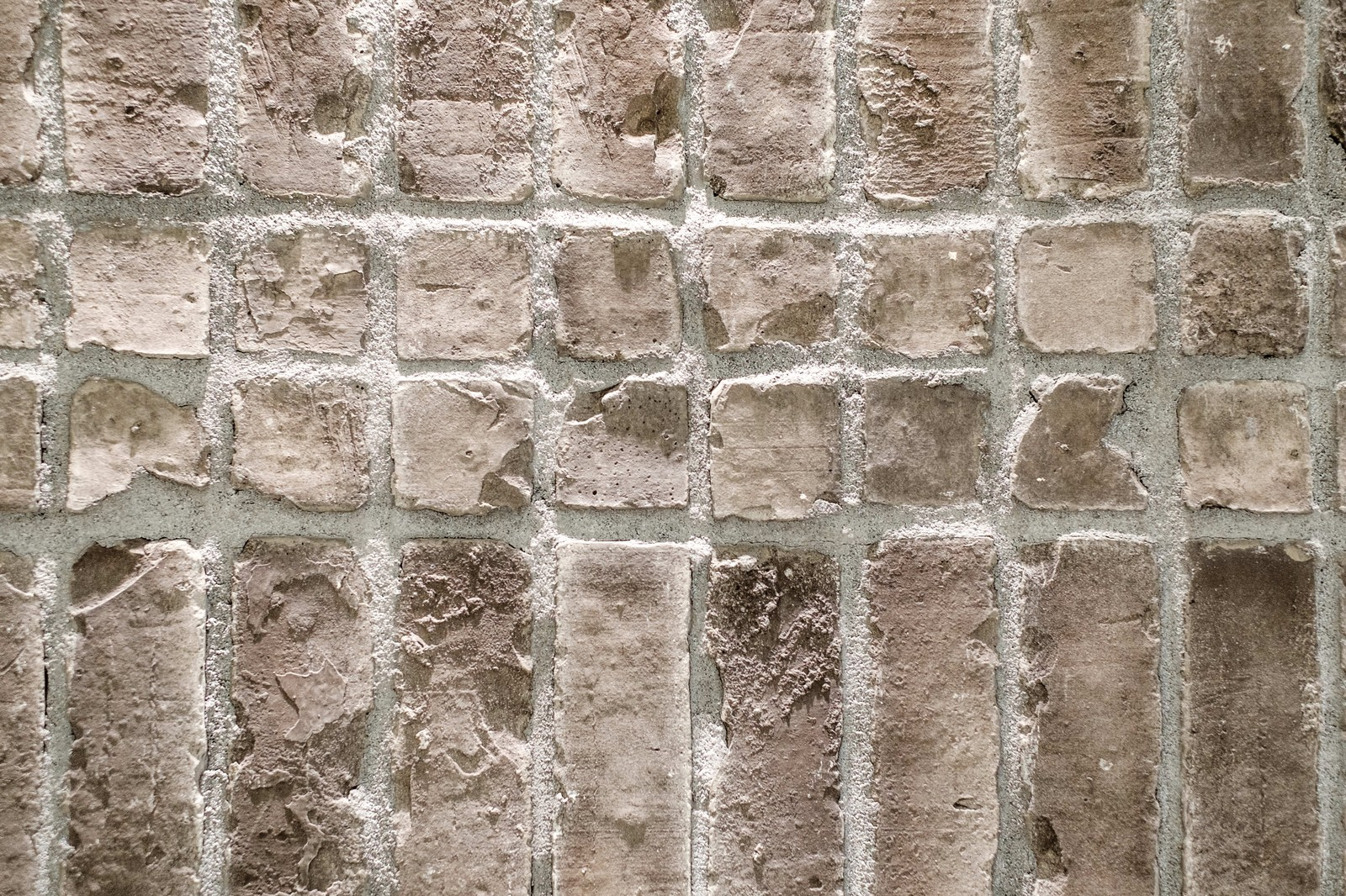 「ラットスタイルの壁」の写真
