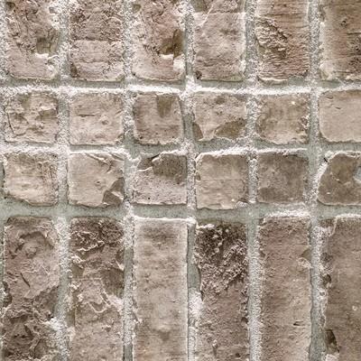 「ラットスタイルの壁」の写真素材