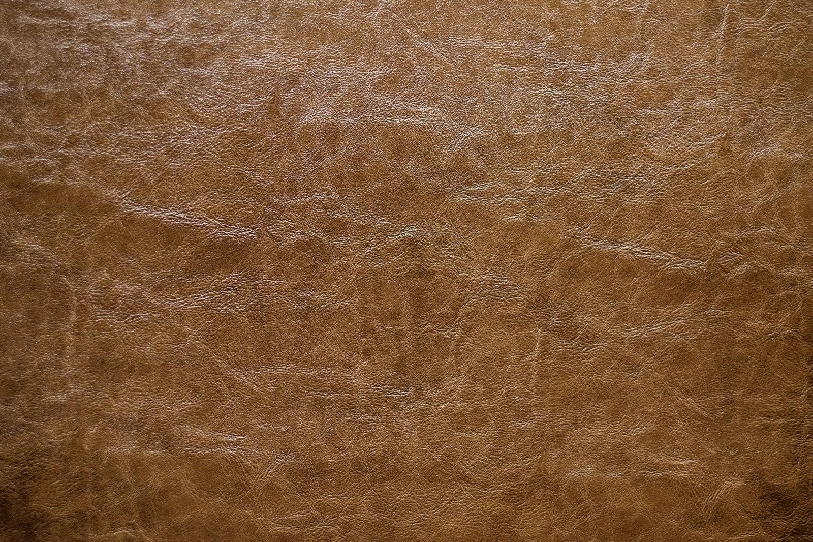 「革製品の表面(テクスチャー)」の写真
