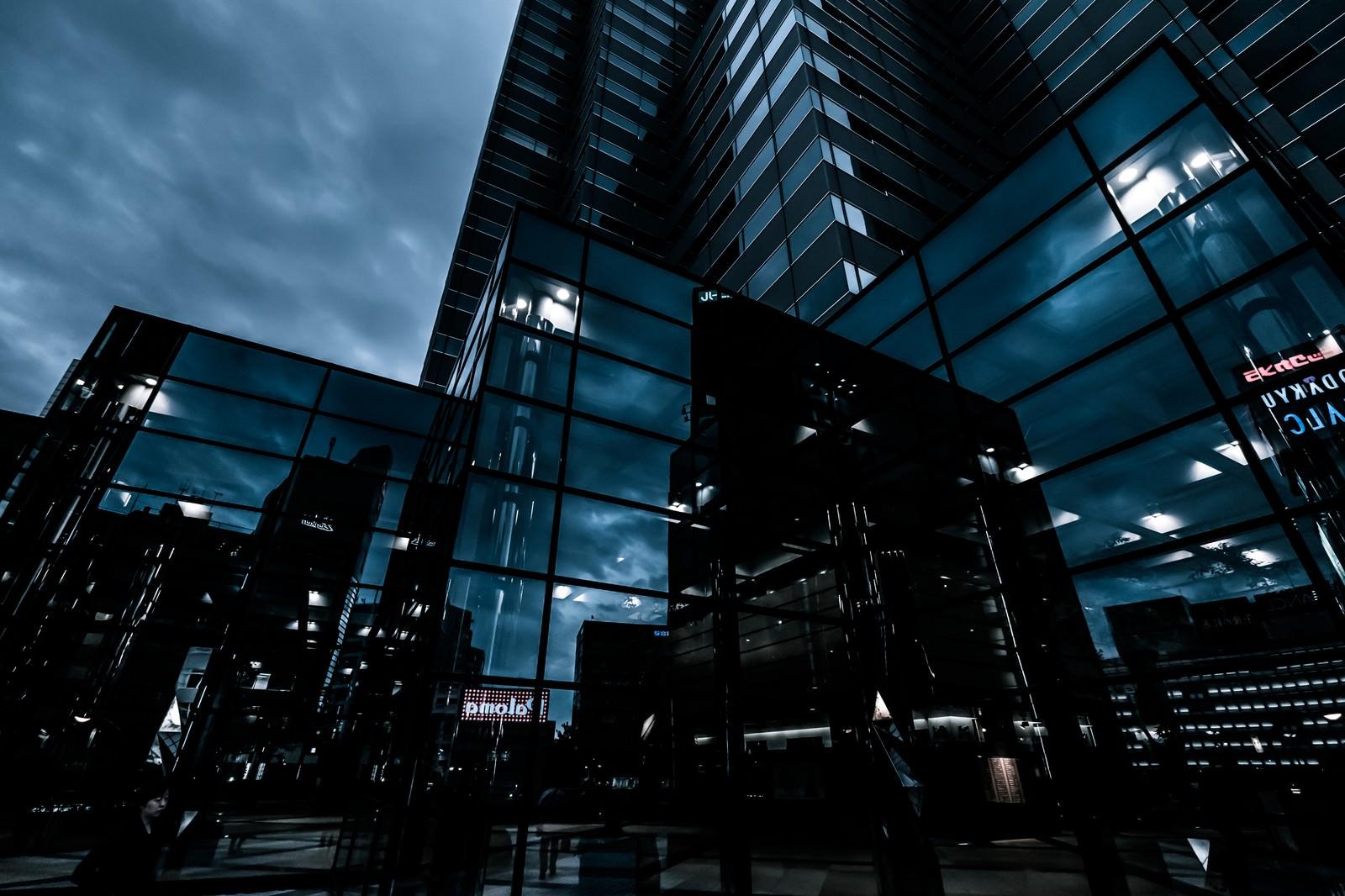 「都会を映すビル」の写真