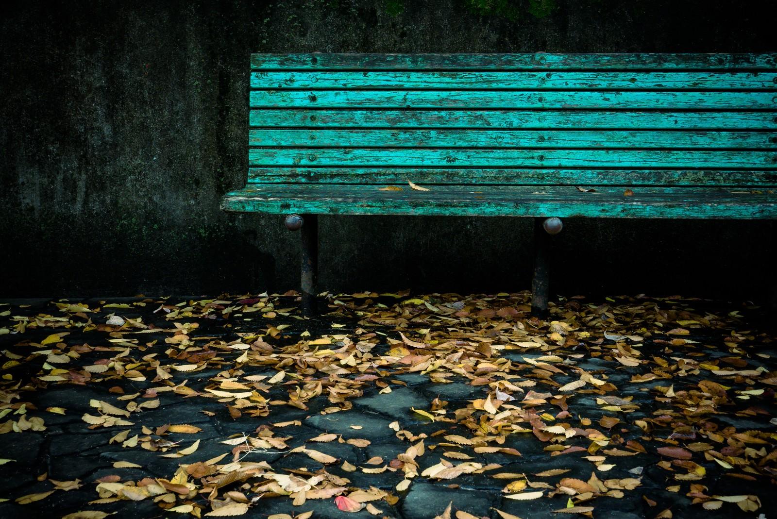 「古びたベンチと落ち葉古びたベンチと落ち葉」のフリー写真素材を拡大