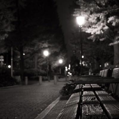 「夜間の人影がない公園のベンチ」の写真素材
