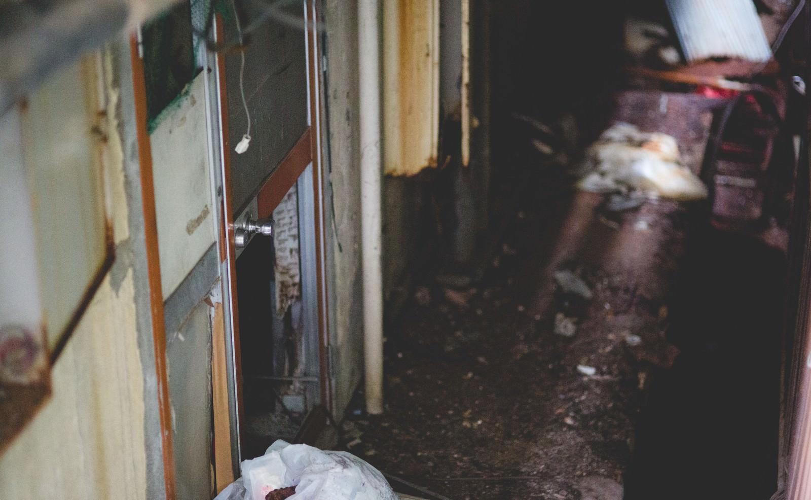 「廃墟とかした民宿の裏口」の写真