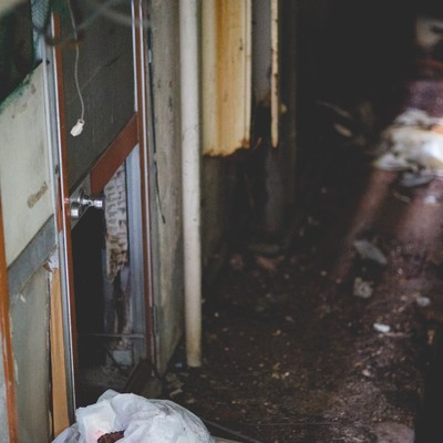 「廃墟とかした民宿の裏口」の写真素材