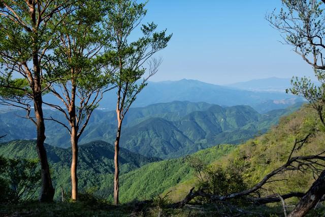 霞がかる丹沢の山並みの写真