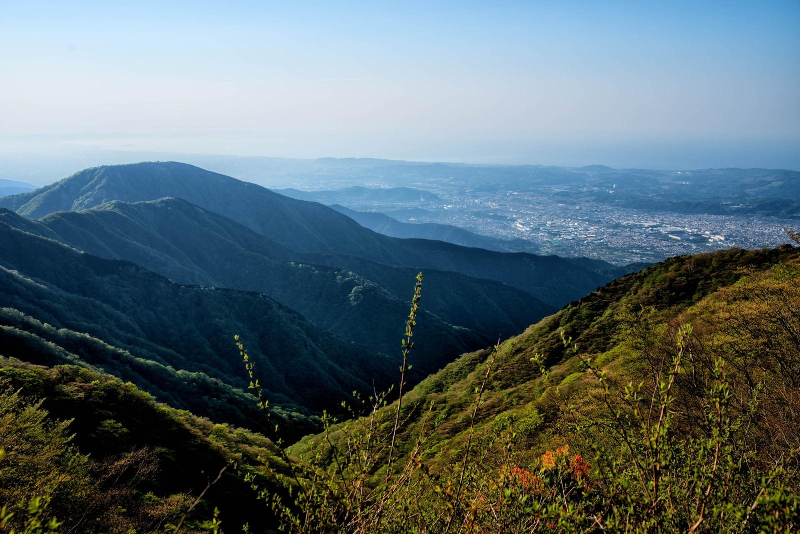 「丹沢の山並みと眼下に広がる秦野市」の写真