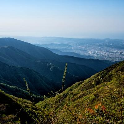 丹沢の山並みと眼下に広がる秦野市の写真