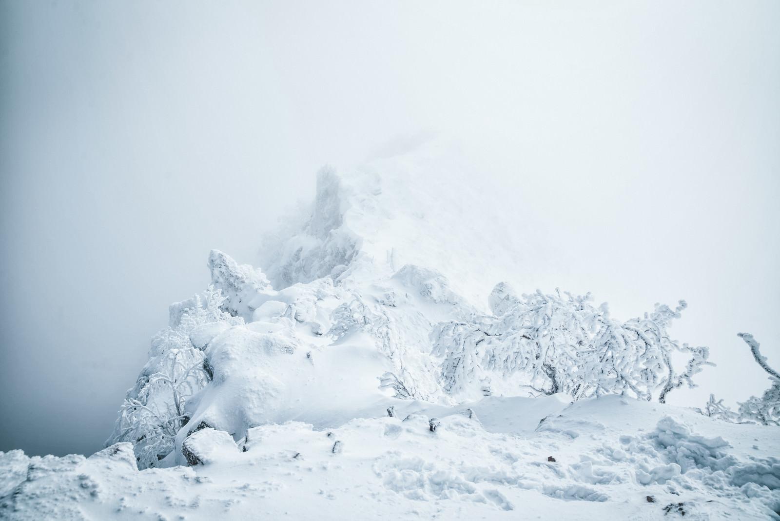 「ガスに包まれた稜線と雪景色」の写真