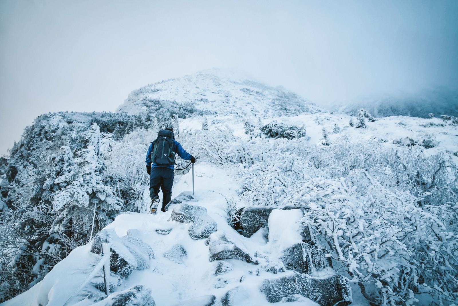 「厳冬の登山道で道狭き場所を歩く登山者」の写真
