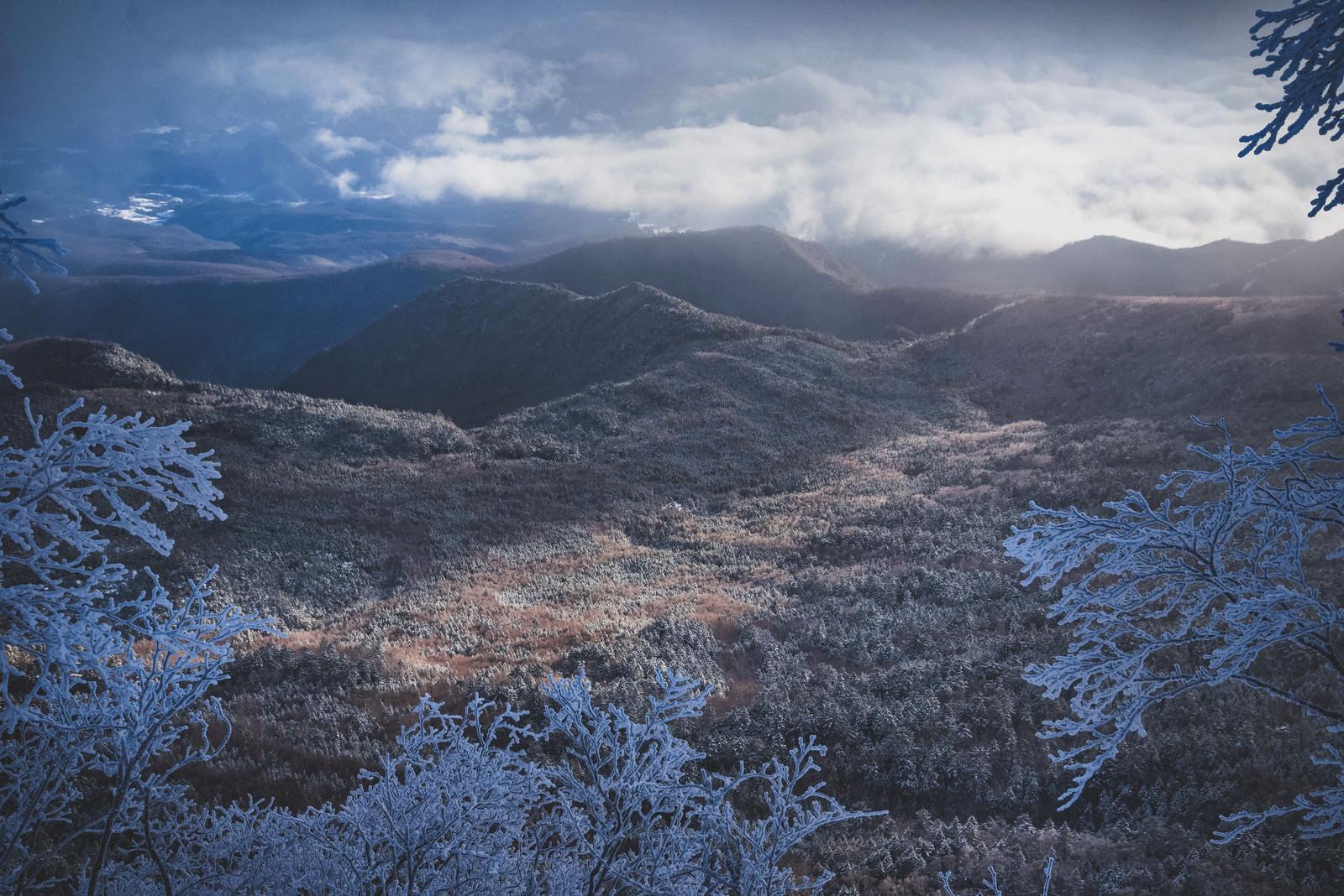 「光が差し込む冬の北八ヶ岳」の写真