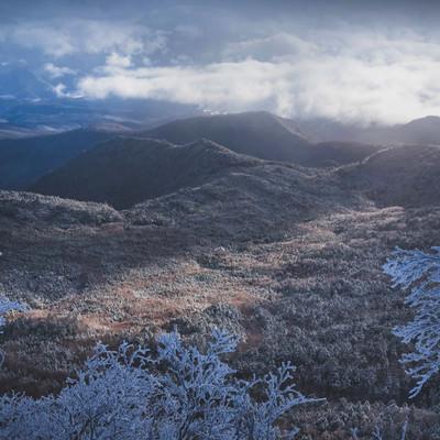 光が差し込む冬の北八ヶ岳の写真