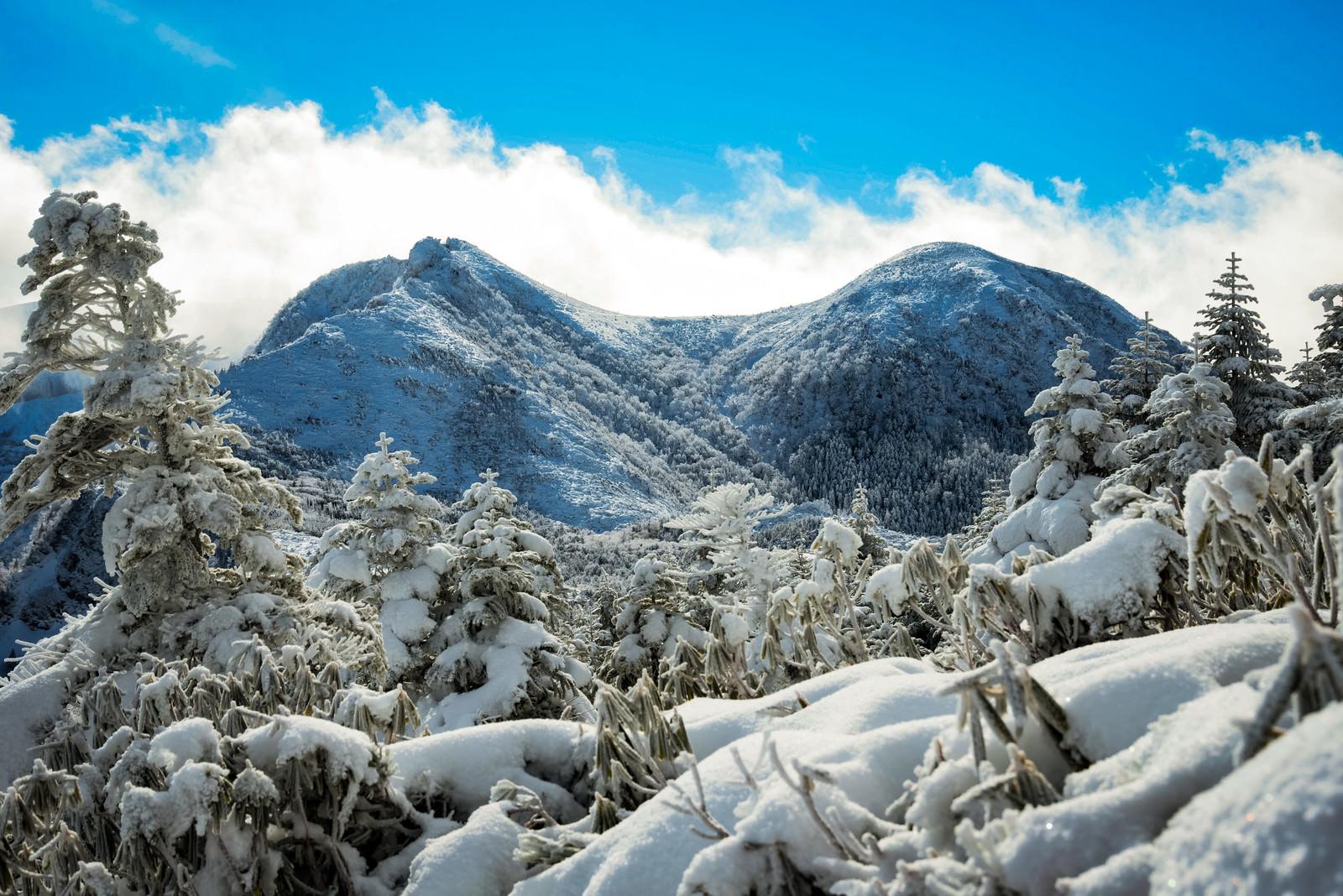 「厳冬期の雪景色(天狗岳)」の写真