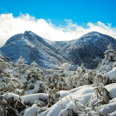 厳冬期の雪景色(天狗岳)の写真