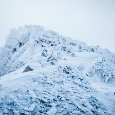 厳冬期の東天狗岳の写真