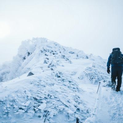 厳冬期の天狗岳の頂上を目指す登山者の写真