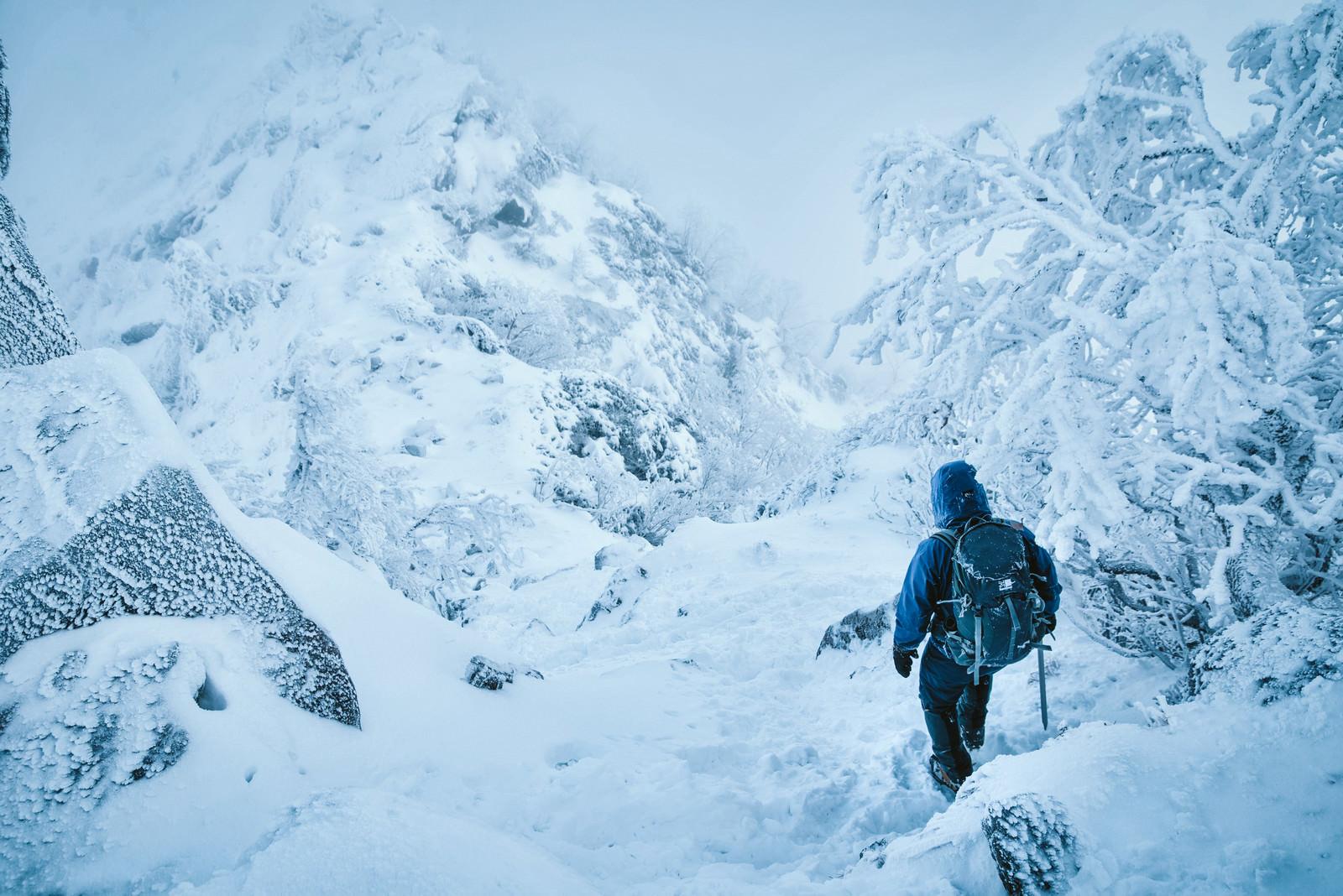 「吹雪く雪山を下山する登山者」の写真