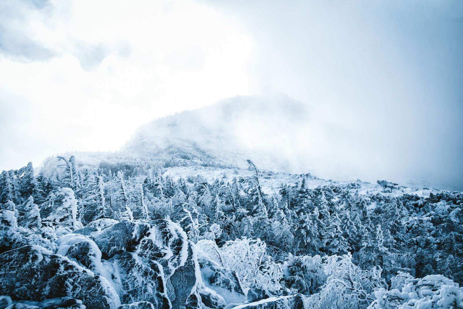 「立ち込める雲に覆われた冬の天狗岳」の写真