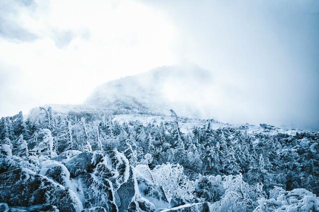 立ち込める雲に覆われた冬の天狗岳の写真