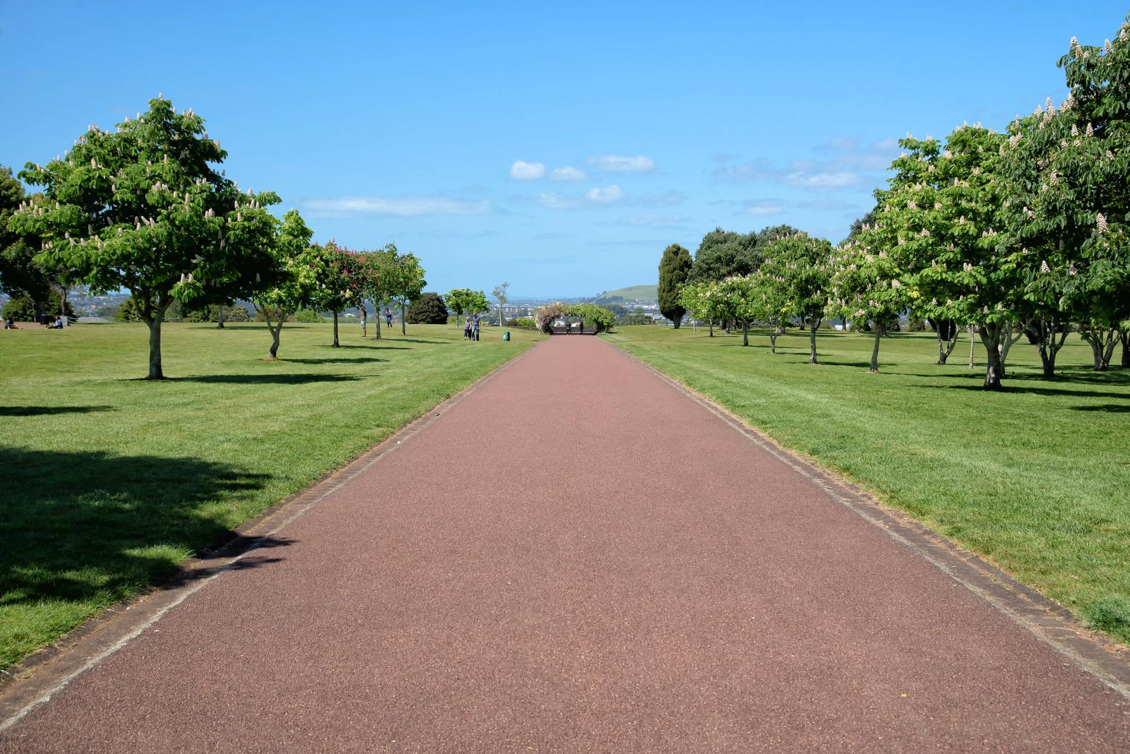 「コーンウォール・パークの遊歩道(ニュージーランド)」の写真