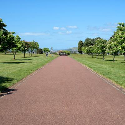 コーンウォール・パークの遊歩道(ニュージーランド)の写真