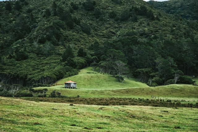 麓にひっそりと立つ小屋(ニュージーランド)の写真