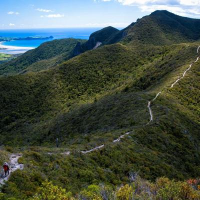 アオテアトレックを歩く登山者(ニュージーランド)の写真