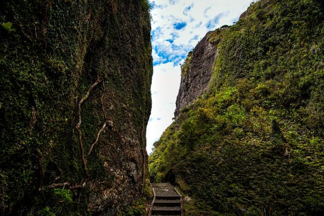 ウィンディキャニオンにある岩壁沿いのトレッキングルート(ニュージーランド)の写真