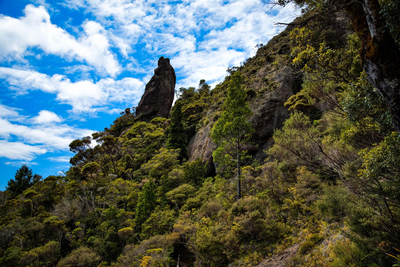 「ウィンディキャニオンに聳え立つ巨岩(ニュージーランド)」の写真