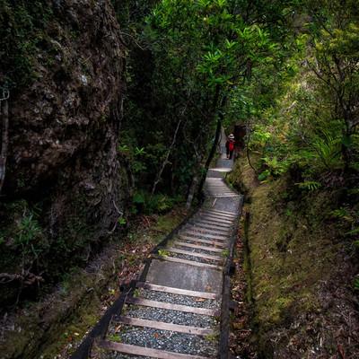 ウィンディキャニオンの長い階段を下る旅行者の写真