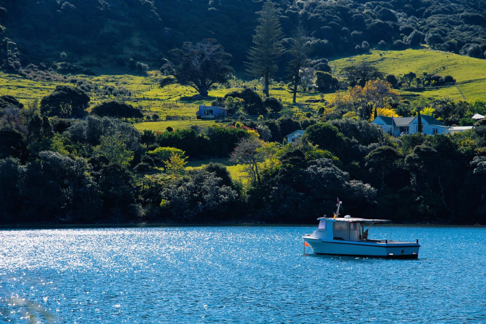 「グレートバリア島の入り江に停まるボート(ニュージーランド)」の写真