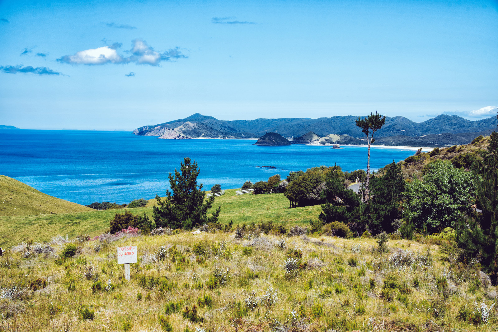 「グレートバリア島の海岸を一望出来る売地(ニュージーランド)」の写真