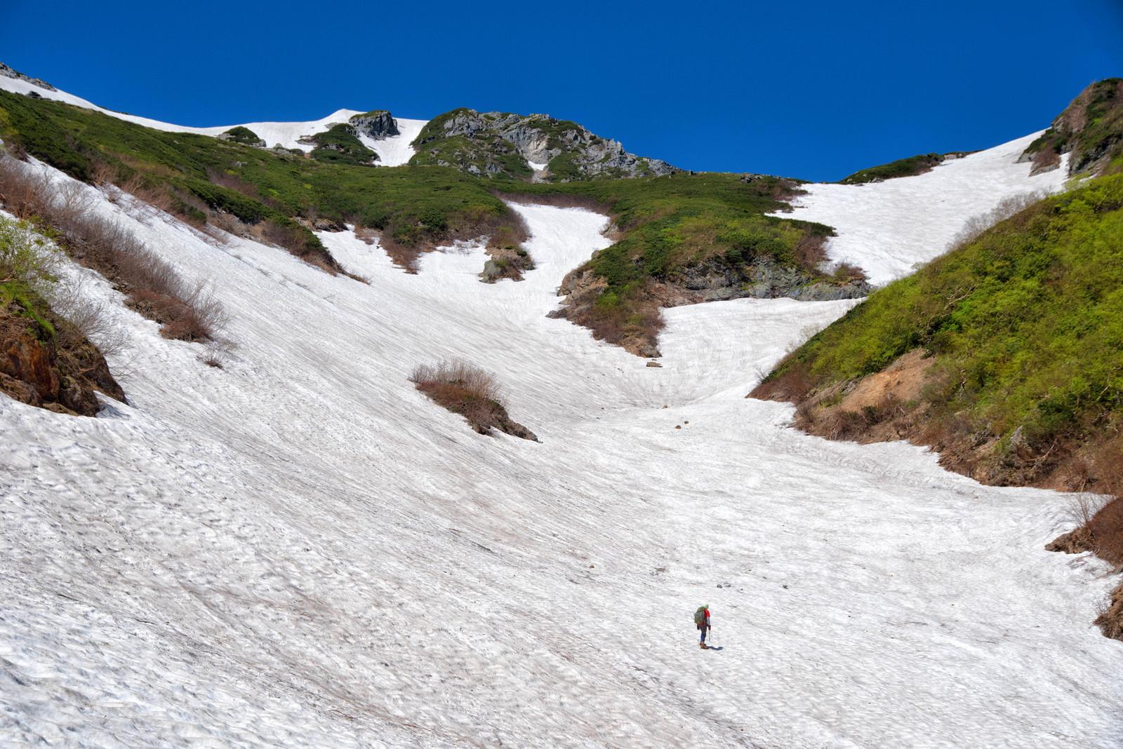 「針ノ木岳の雪渓に挑む登山者」の写真